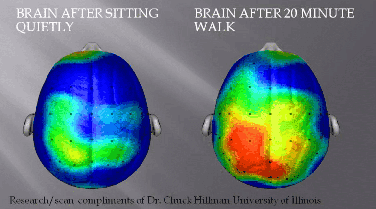 decisions that make you rich or poor; why walking is good for the brain and soul